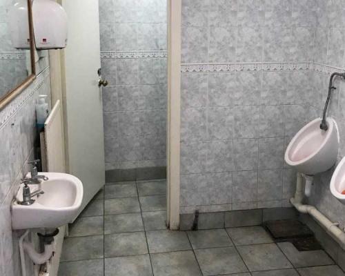 toilet-refurb2