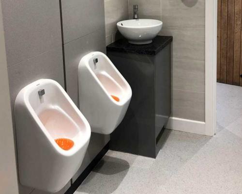 toilet-refurb7